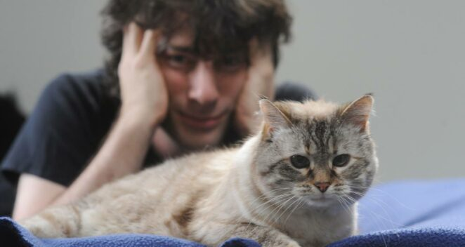 neil gaiman kedi
