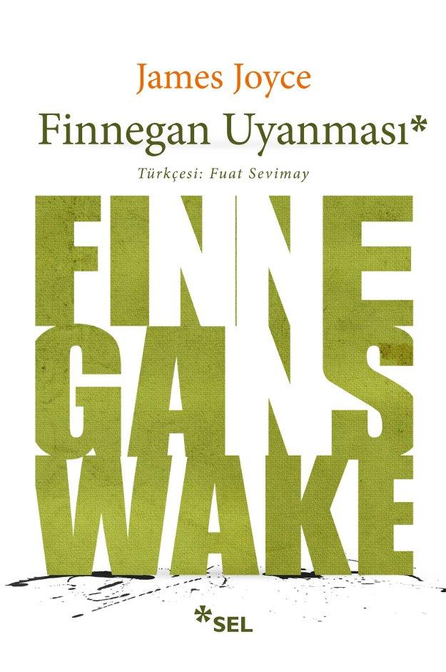 finnegan-uyanmasi