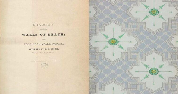 Ölümcül Kitap Shadows from the Walls of Death
