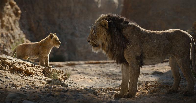 Aslan Kral İnceleme