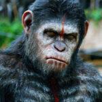 Planet of the Apes - Maymunlar Gezegeni