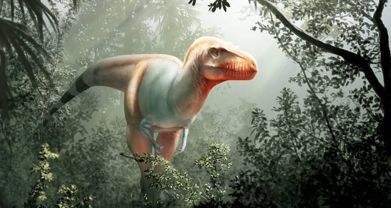 Tyrannosaurus - Thanatotheristes degrootorum