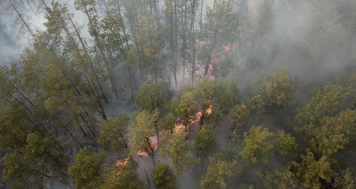 Çernobil Orman Yangını