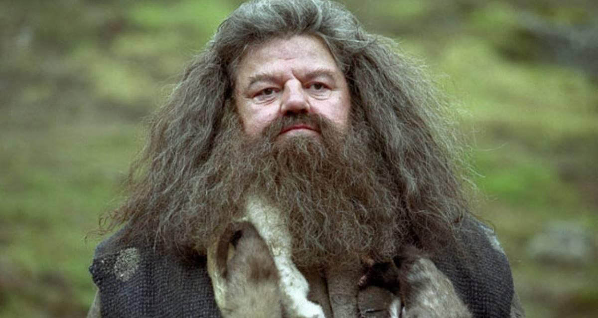 Hagrid - Fantastik Canavarlar 3