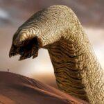 dune kum solucanları