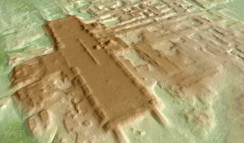 Maya Uygarlığı Aguada Fenix