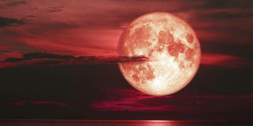 Çilek Ayı - Kısmi Ay Tutulması