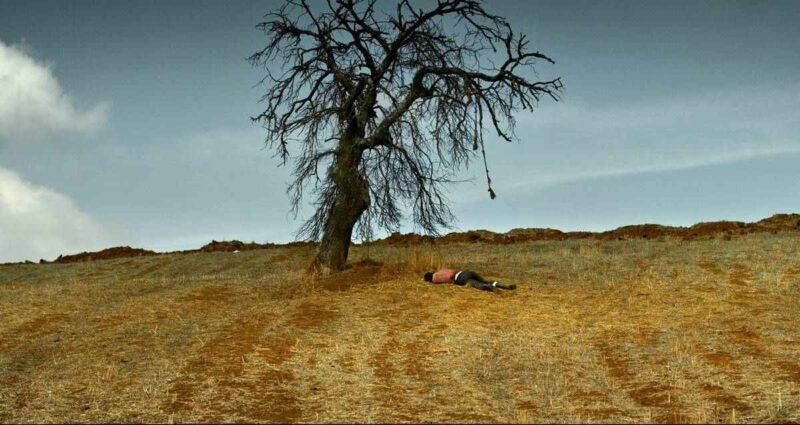 TRT 2 Ağustos Filmleri - Ahlat Ağacı