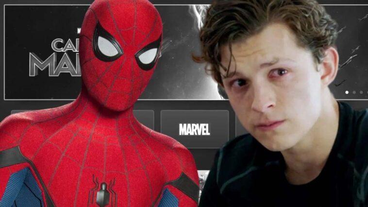 Spider-Man Disney Plus