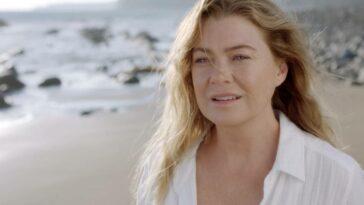 Grey's Anatomy 17. Sezon Karakter Final