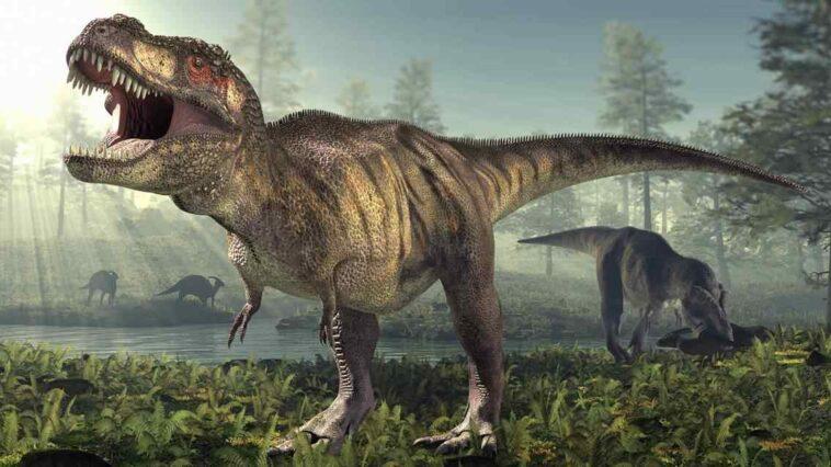 t-rex nüfusu