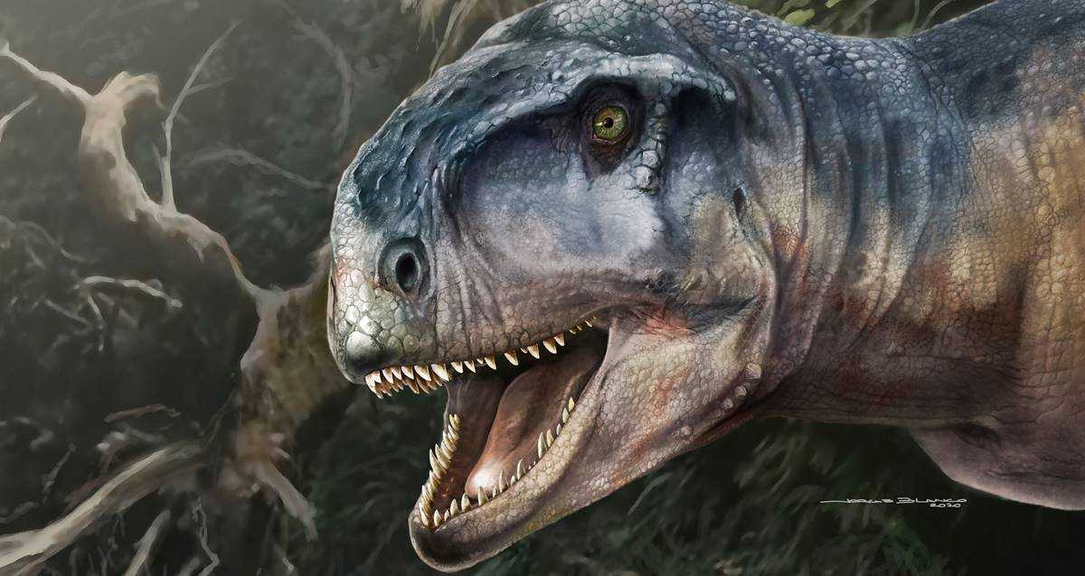 yeni etçil dinozor Llukalkan aliocranianus