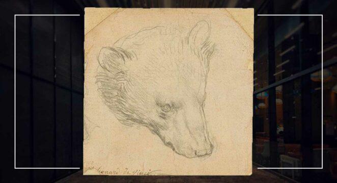 Leonardo da Vinci Head of a Bear Bir Ayının Kafası