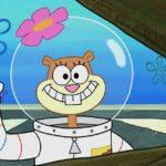 Sandy Cheeks SpongeBob