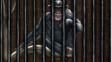 hapishane aylık öykü seçkisi