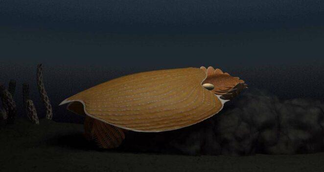 Titanokorys gainesi uzaylı fosil