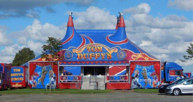 palyaço Tom Duffy's Circus